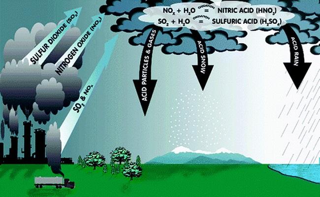Nước mưa rơi xuống sẽ mang theo nhiều bụi bẩn và vi khuẩn có trong bầu khí quyển