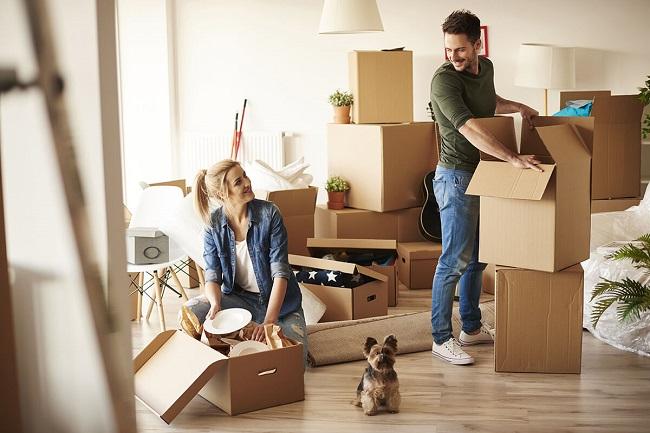 Cách vận chuyển vật nuôi khi chuyển nhà an toàn, tiết kiệm