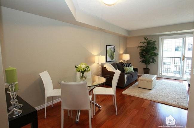 Loài cây cảnh này đặc biệt phù hợp trong không gian phòng khách hiện đại.